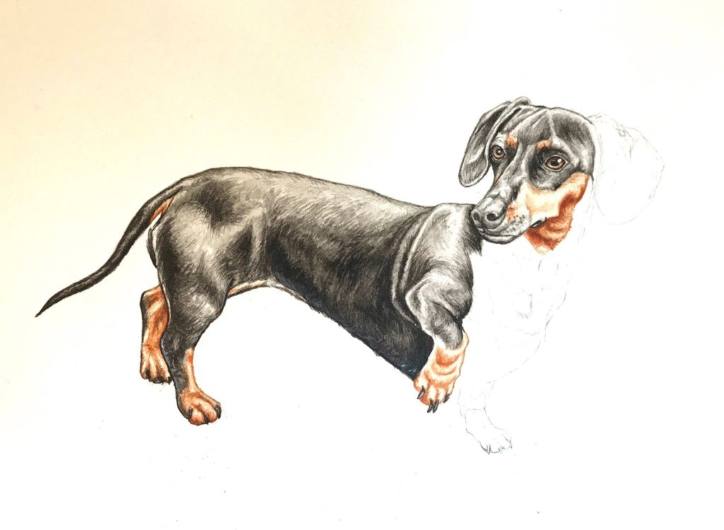 Amy Lynne Design- Painting the four dogs for Coming Home for Christmas