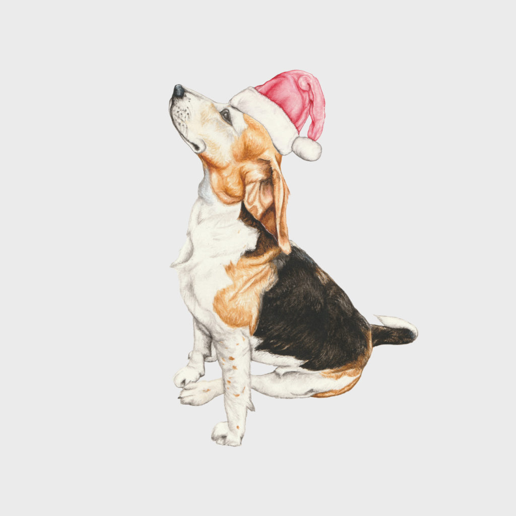 Introducing – Coming Home for Christmas. A Special Collaborative Project
